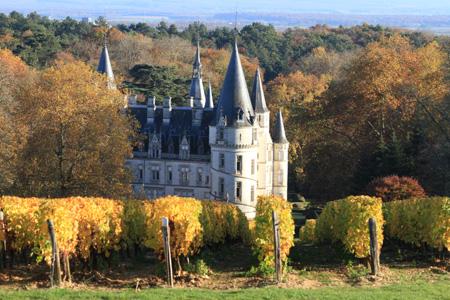 Loire des îles Chateau du Nozet